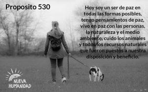 Nueva Humanidad Proposito Para Cada dia Proposito 530