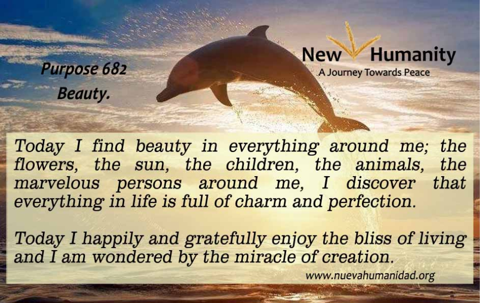 Nueva_Humanidad-Purpose-682-Beauty