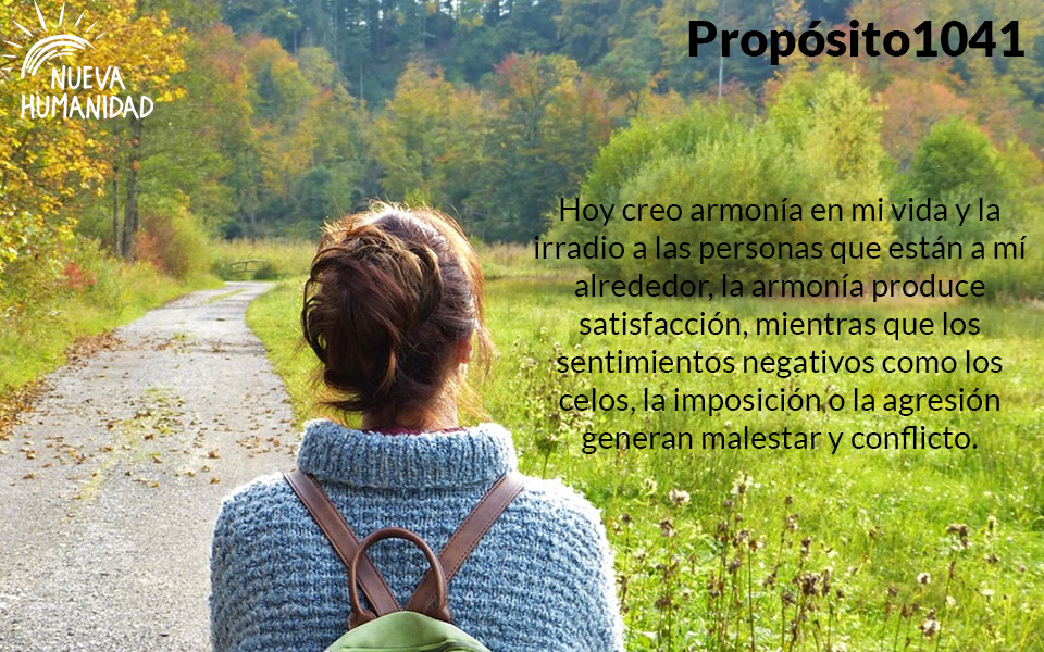 NH Proposito 1041
