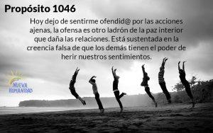 NH Proposito 1046