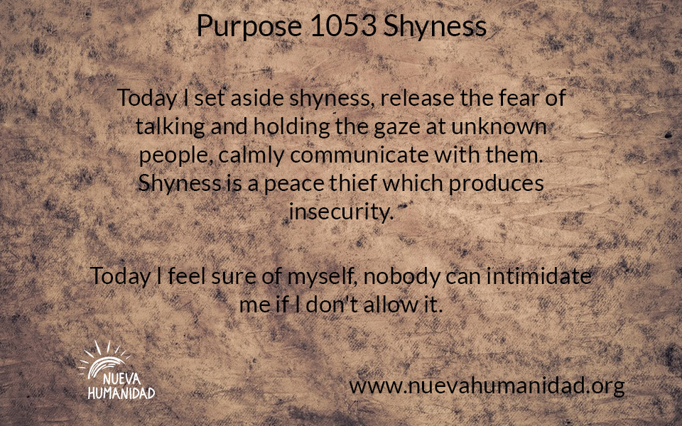NH Purpose 1053 Shyness