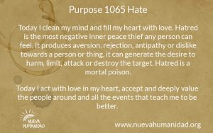 NH Purpose 1065 Hate
