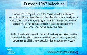 NH Purpose 1067 Indecision