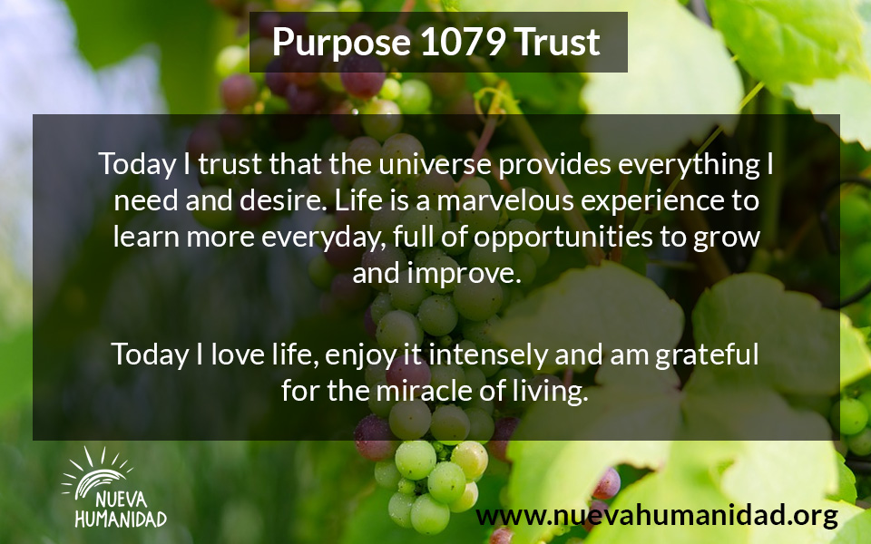 NH Purpose 1079 Trust