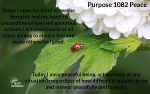 NH Purpose 1082 Peace