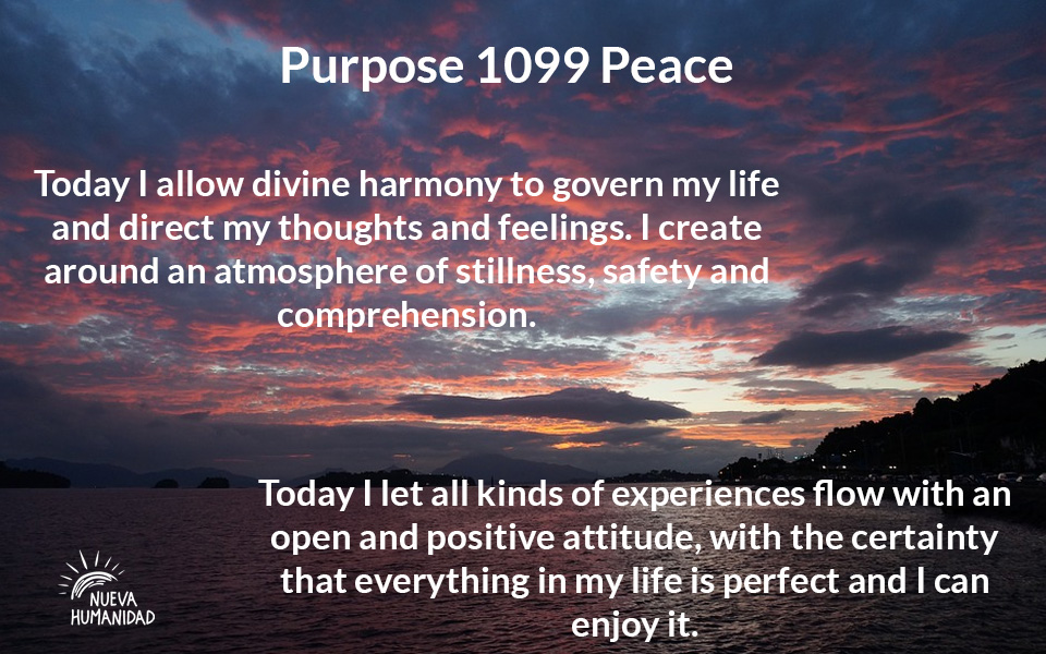 Purpose 1099 Peace