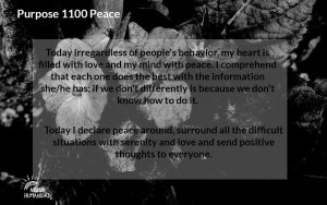 NH Purpose 1100 Peace