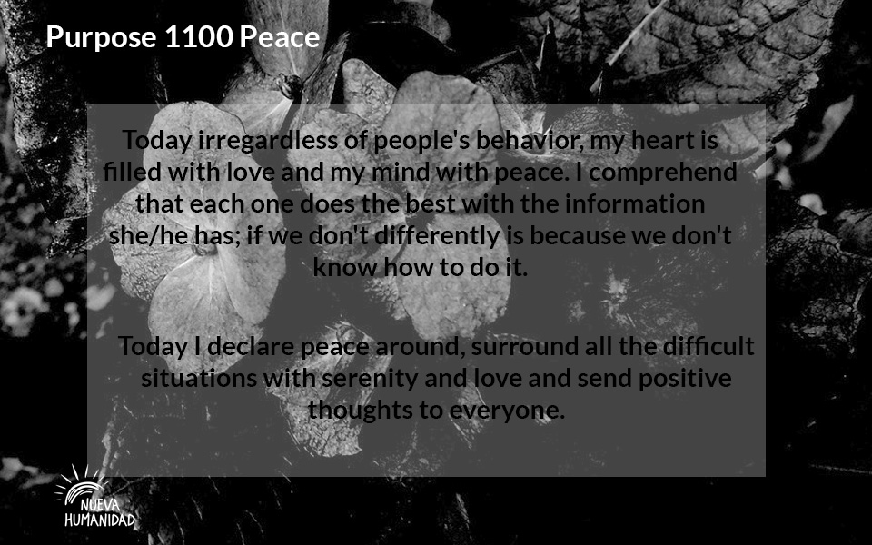 NH Purpose 1100 Peace