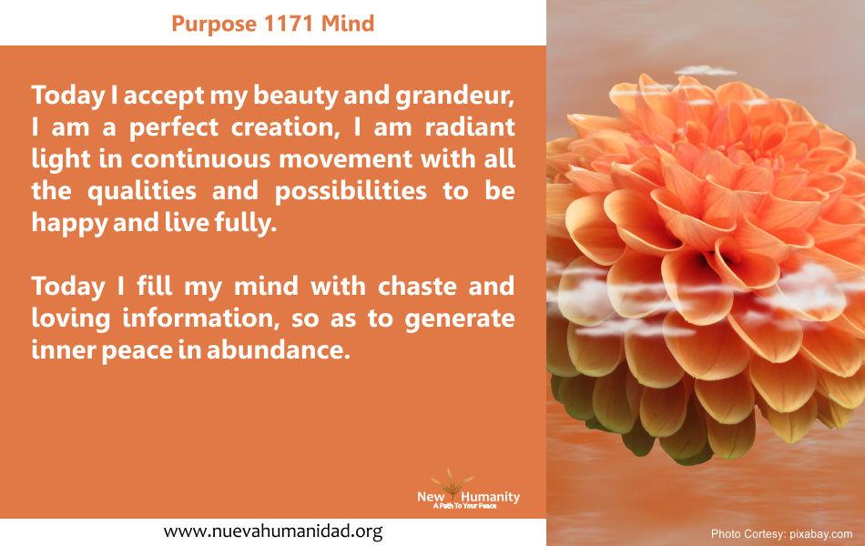 Purpose 1171 Mind
