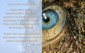 Purpose 1288 Opportunities