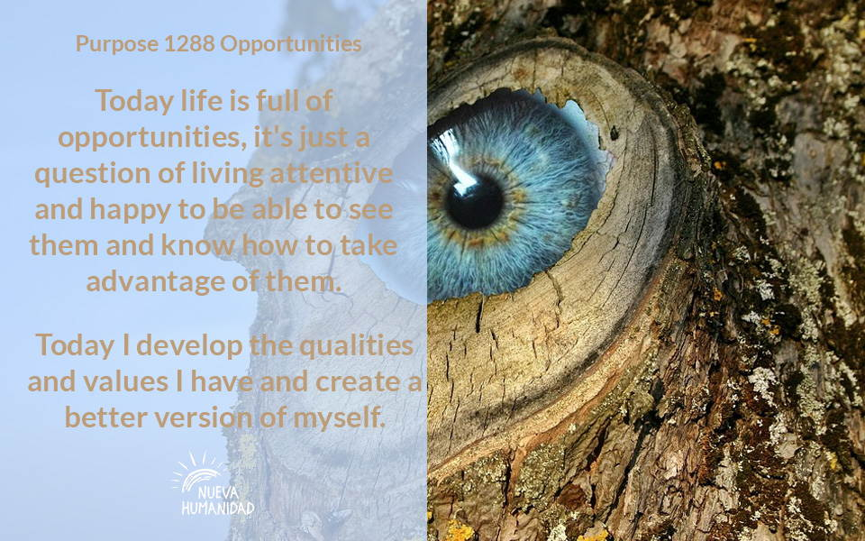 Purpose 1288 Opportunities