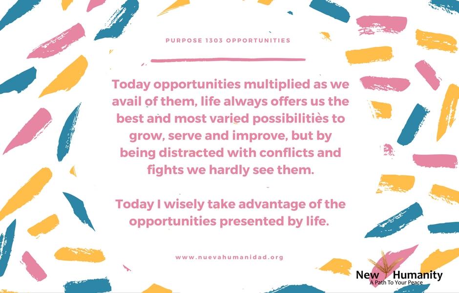 Purpose 1303 Opportunities