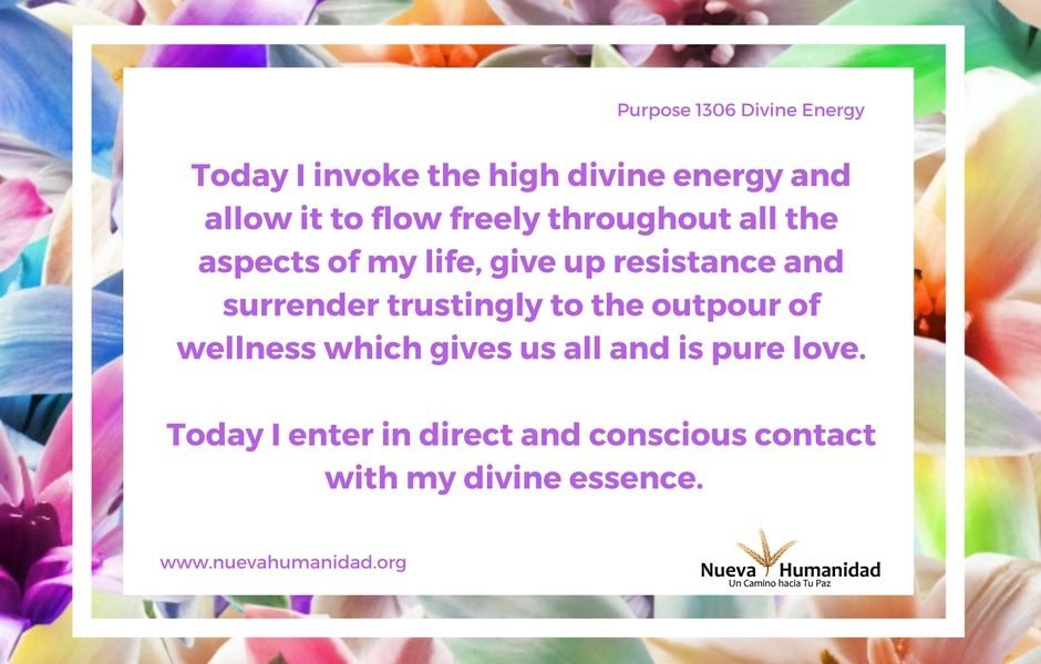 Purpose 1306 Divine Energy