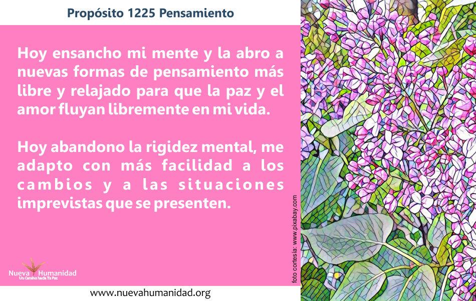 Propósito 1225 Pensamiento