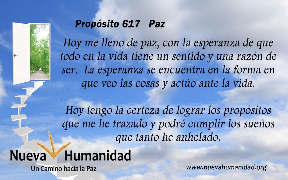 Propósito 617 Paz
