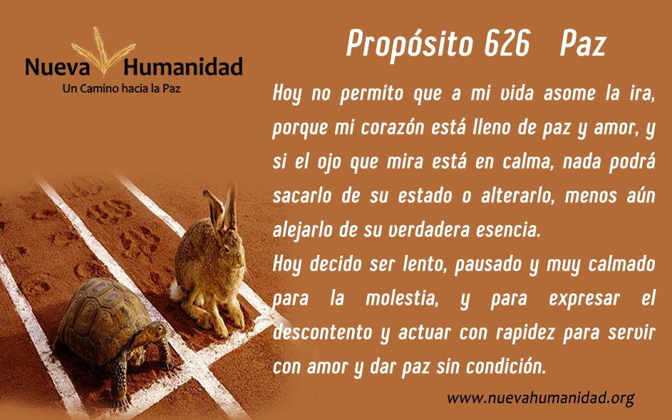 Propósito 626 Paz