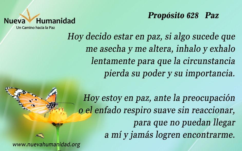 Propósito 628 Paz