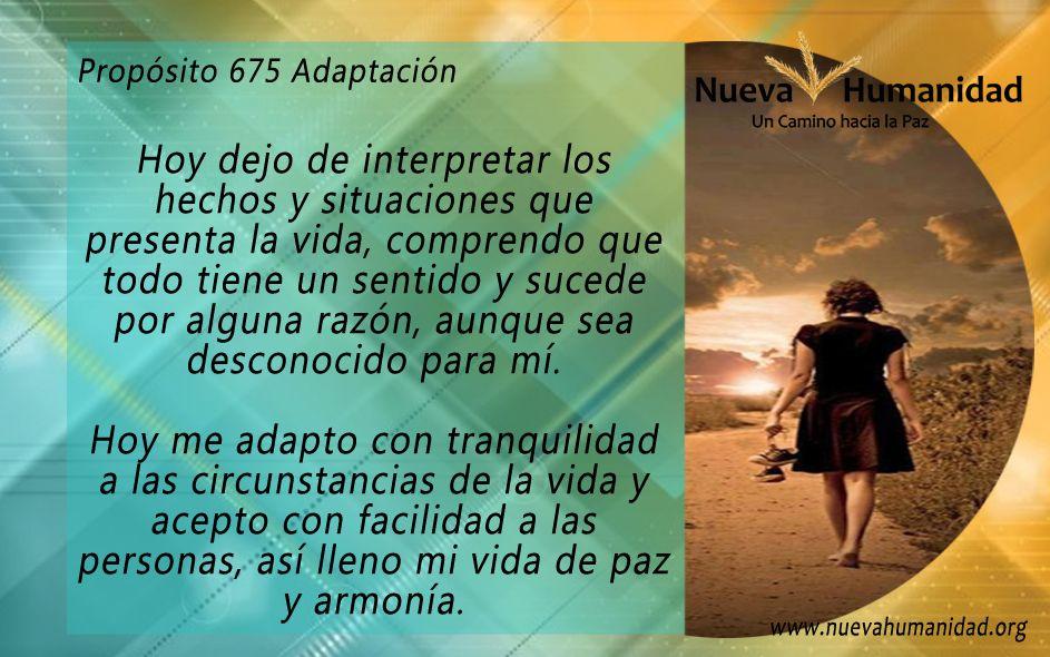 Propósito 675 Adaptación