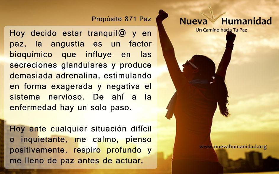 Propósito 871 Paz
