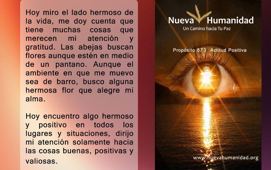 Propósito 873 Actitud positiva