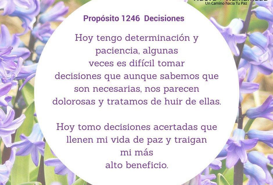 Propósito 1246 Decisiones