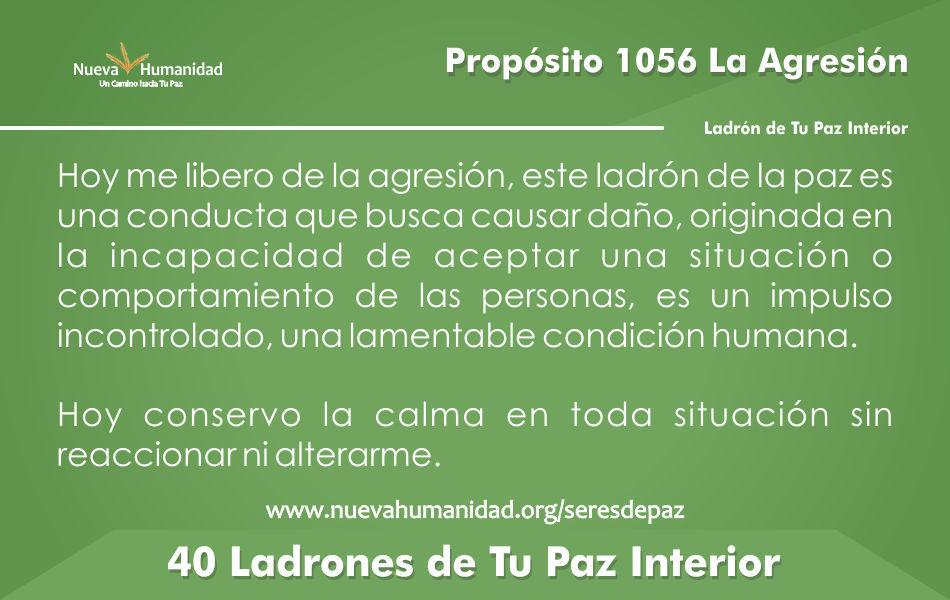 Propósito 1056 La agresión