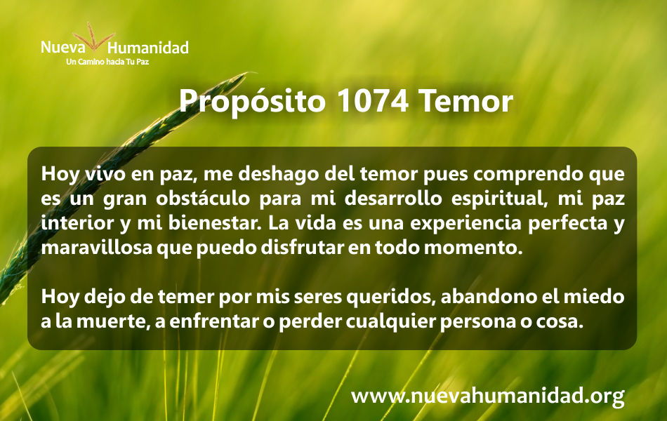 Propósito 1074 Temor