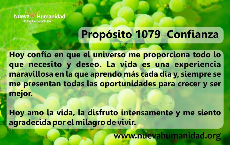 Propósito 1079 Confianza