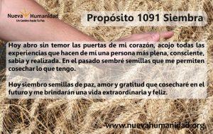 Propósito 1091 Siembra