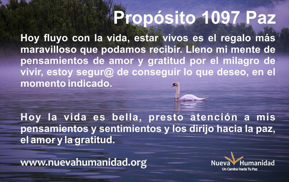 Propósito 1097 Paz
