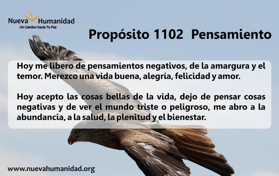 Propósito 1102 Pensamiento