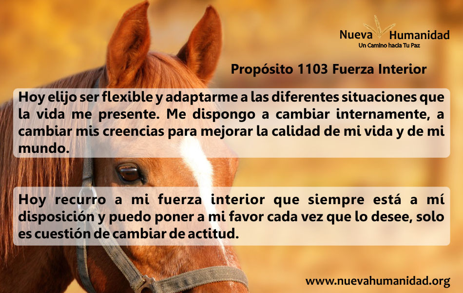 Propósito 1103 Fuerza interior