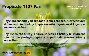 Propósito 1107 Paz 2