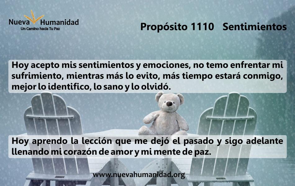 Propósito 1110 Sentimientos