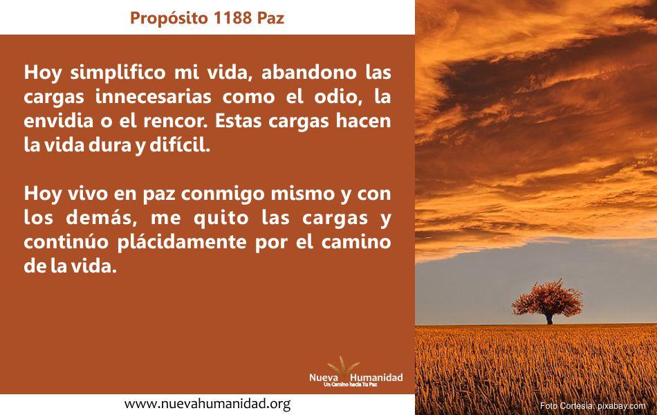 Propósito 1188 Paz