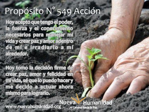 Propósito 549 Acción