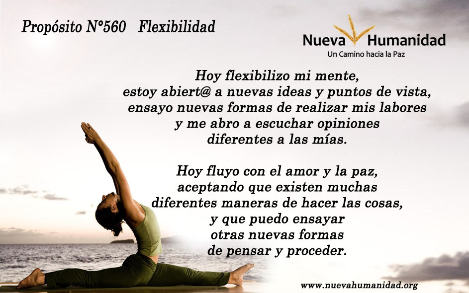 Propósito 560 Flexibilidad