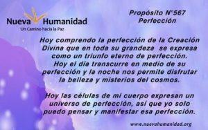 Propósito 567 Perfección