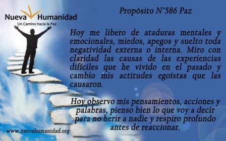 Propósito 586 Paz