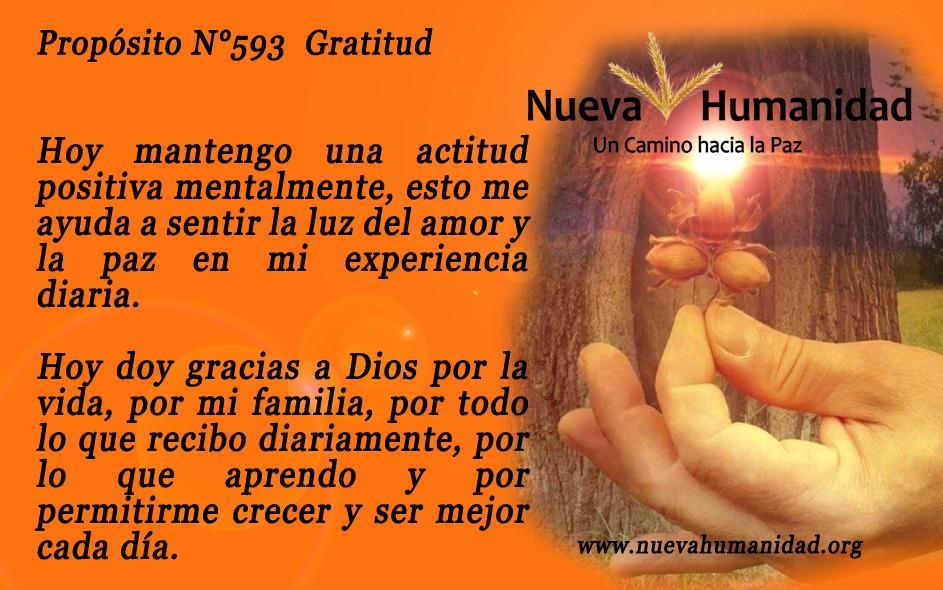 Propósito 593 Gratitud