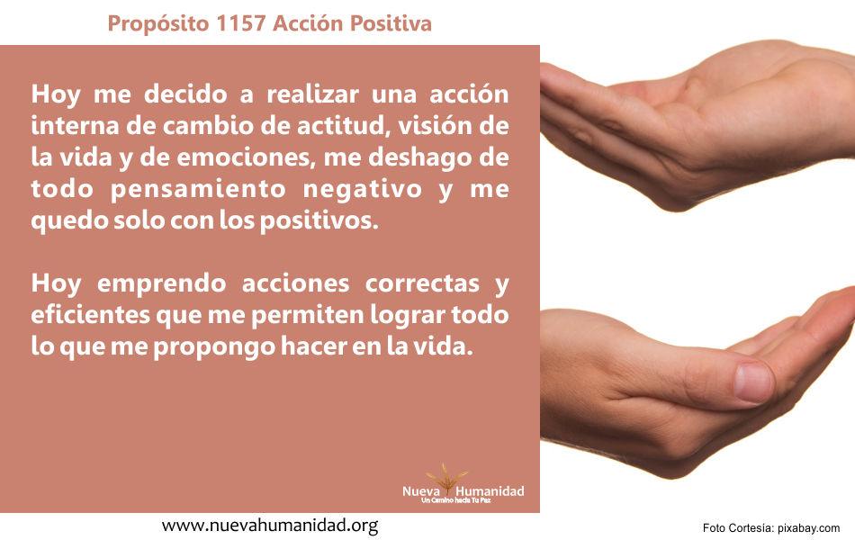Propósito 1157 Acción positiva