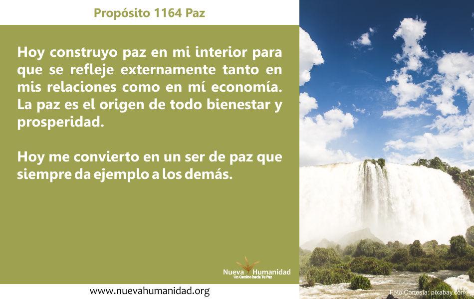 Propósito 1164 Paz