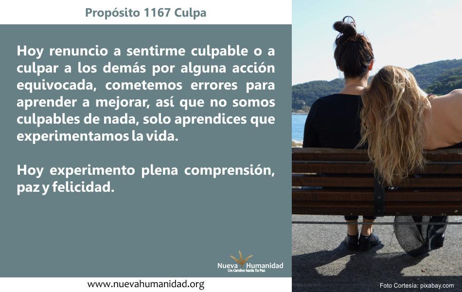 Propósito 1167 Culpa