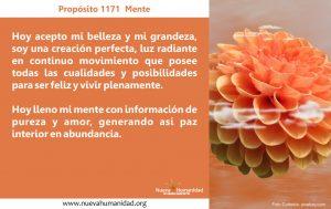 Propósito 1171 Mente