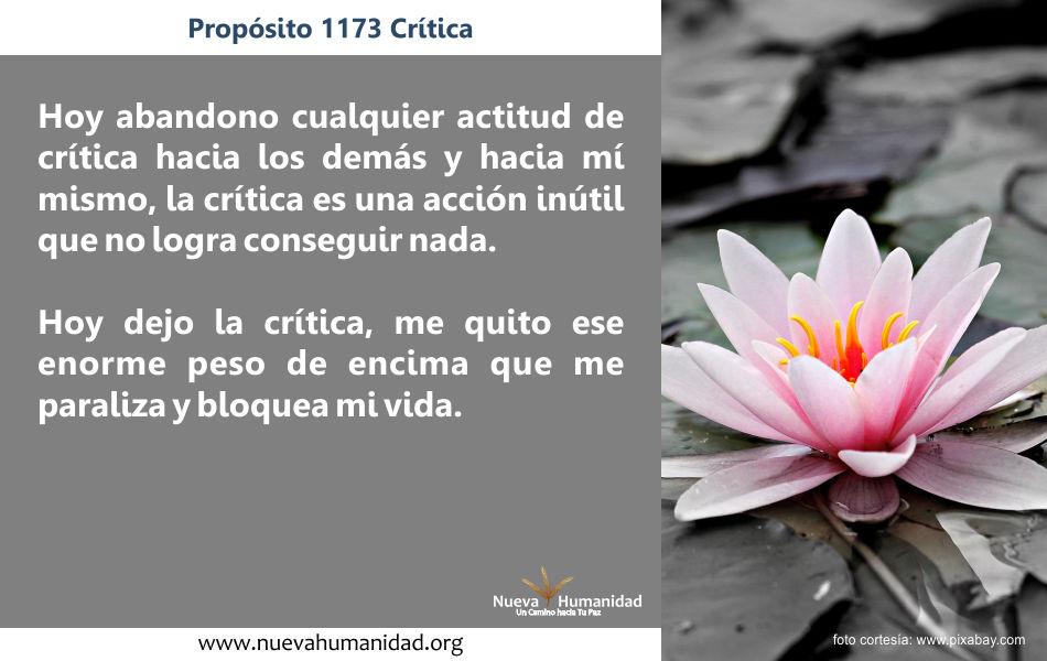 Propósito 1173 Critica