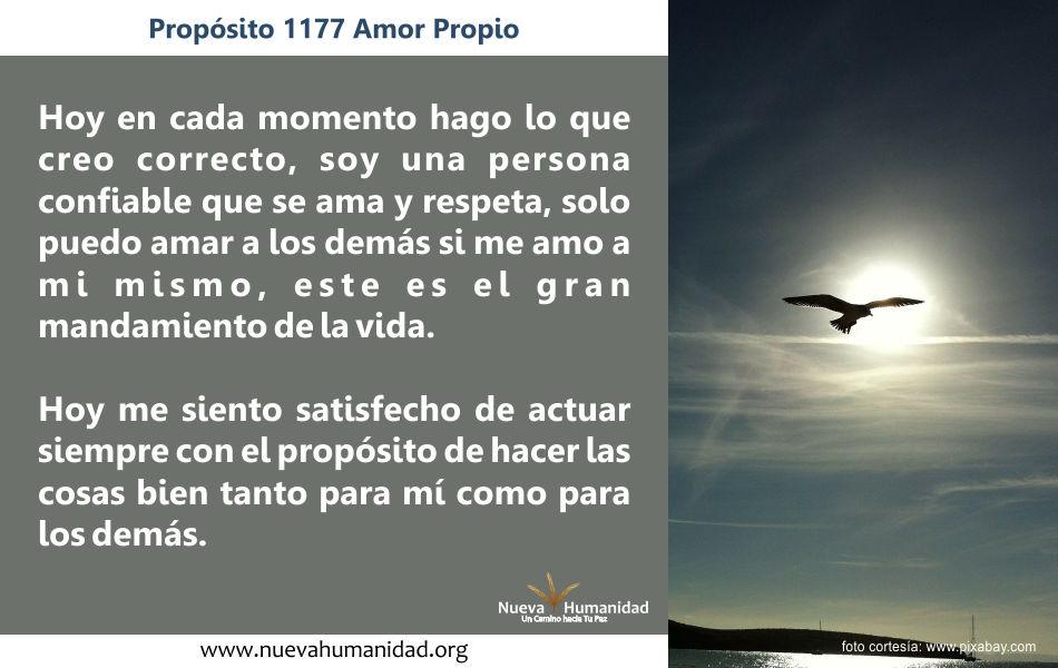 Propósito 1177 Amor propio