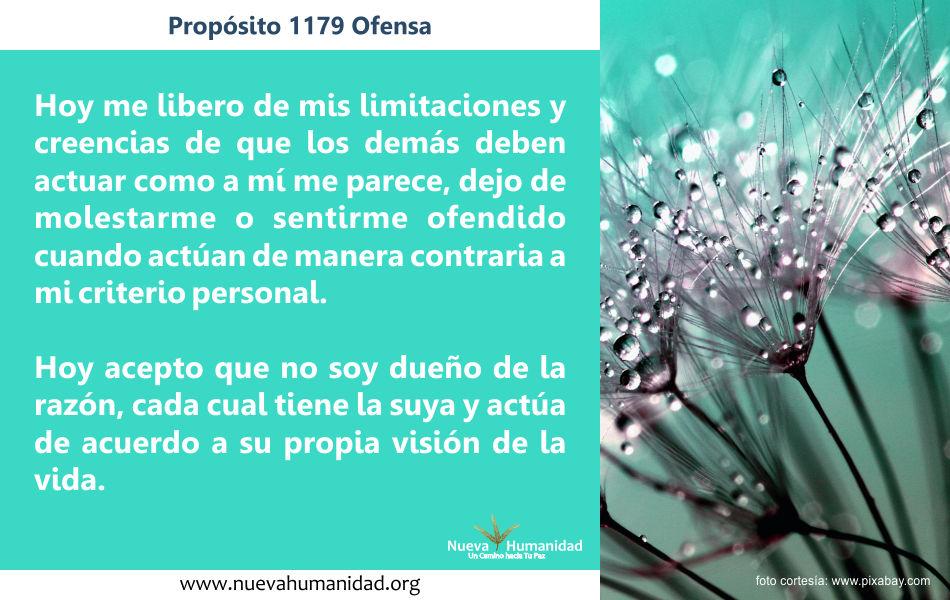 Propósito 1179 Ofensa