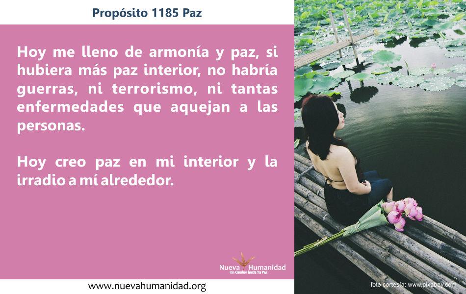 Propósito 1185 Paz