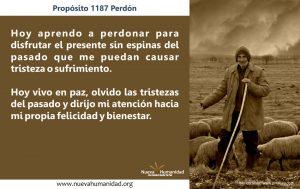Propósito 1187 Perdón