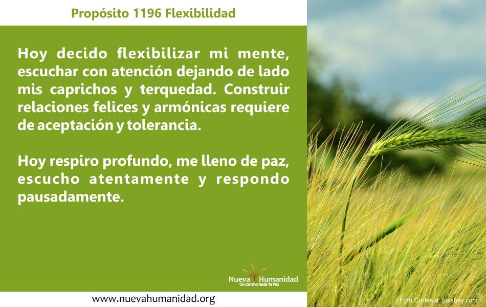 Propósito 1196 Flexibilidad